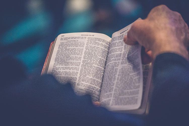 Trzeba wielbić Boga, wielbić Jezusa, poznawać Jezusa przez Ewangelię